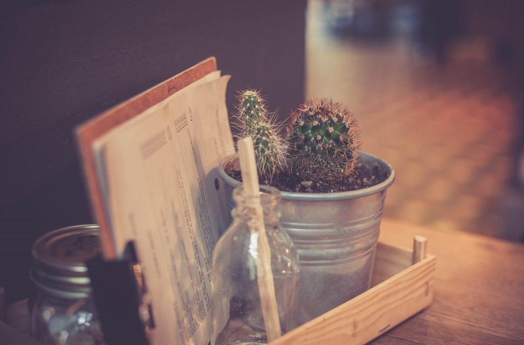 Cactus and menu on a table in a cafe, Northern Quarter